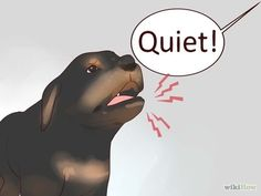Image titled Train Your Rottweiler Puppy With Simple Commands Step 8