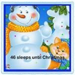 It is only 46 sleeps until #Christmas It's #TheBestTimeOfTheYear having #GoodTimes with #Friends and #Family The #ChristmasBuzz of #Shopping for #Gifts and #StockingFillers A #WinterWonderland with a #Snowman in the garden and cosy #WinterNights putting up your #ChristmasTree and #Decorations Excited kids on #ChristmasEve waiting for #Santa to come and #ChristmasDay #LoveIt #Smile #BeHappy #HeartzDesire #ChristmasCountdown