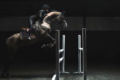 Here's a horse & rider team that can 'see' their own greatness. Sports Studio: Horse Jumping with Malin Baryard - H&M Life. Short, slow mo video of jumping Equestrian Outfits, Equestrian Style, Equestrian Fashion, Horse Videos, Types Of Horses, English Riding, Show Jumping, Jolie Photo, Horse Riding