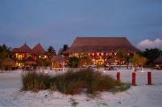 Photos - Casa Sandra Boutique hotel - Holbox Island - Mexico - $235 per night - whale sharks