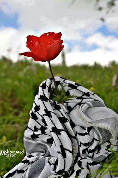 Palestinian Flower