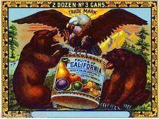 San Jose Fruits of California Bear & Eagle Can Fruit Crate Label Print