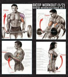 Bicep Workout Part 1 - Healthy Fitness Exercises Gym Low Tricep - Yeah We Train !