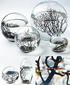 This would be a cool gift to give or receive