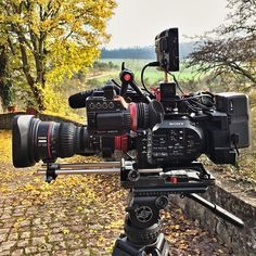 Not all beasts can be sexy Sweet setup by @maxmolkenthin Tag someone who'd like this beast #camera #gear #videoshoot #sony #canon #cinema #equipment #moviemaking #beauty #onset #loveyourjob #filmschool