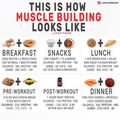 How To Grow Muscle, Food To Gain Muscle, Muscle Diet, Muscle Nutrition, Muscle Food, Proper Nutrition, Diet And Nutrition, Diet For Gaining Muscle, How To Build Muscles