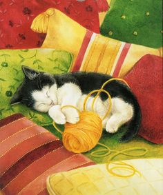 Calender cat