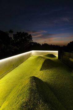 Architecture roof garden