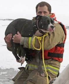 Montpelier, Vermont firefighter, Galen Thereault, holds Emma just after she was rescued from the Winooski River | Shared by LION