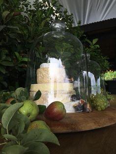 Newstead Wines #weddinginspiration Pinot Noir Grapes, Wine Sale, Harvest Time, Sauvignon Blanc, Tasting Room, Wines, Vineyard, Wedding Inspiration, Table Decorations