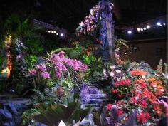 philadelphia flower show 2012 | Philadelphia International Flower Show 2012: A Great Family Day Trip ...