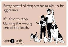 Stop blaming the dogs...it's the owners who are at fault.