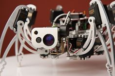 –iC is face-tracking hexapod (six-legged) robot that can spot people's faces in a crowd, follow them around, interact with them and capture their image. http://www.hexapodrobot.com/ic/whatic.html