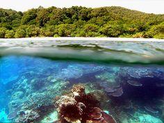 Pulau Redang (Malaysia)