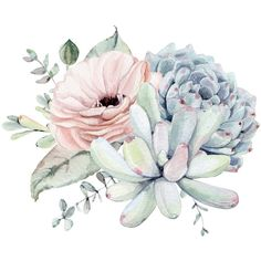 Pretty Pastel Succulents Art Print ($13) ❤ liked on Polyvore featuring home, home decor, wall art, succulent wall art, pastel wall art and pastel home decor
