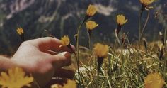 Image about beautiful in vintage and grunge life. Aesthetic Grunge, Aesthetic Vintage, Vintage Photography, Nature Photography, Photography Flowers, Tumblr Photography Hipster, Aesthetic Photography Nature, Nature Aesthetic, Beach Aesthetic