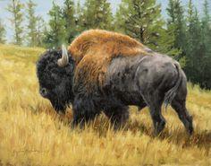 Lone Bull - by Krystii Melaine Hunting Drawings, Horse Drawings, Animal Drawings, American Bison, American Indian Art, Wildlife Paintings, Wildlife Art, Buffalo Pictures, Buffalo S