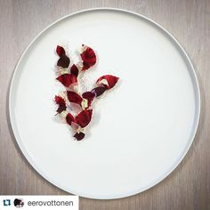 #Repost @eerovottonen  Glazed Pigeon hearts with roasted  Beetroot fermented Jerusalem artichoke and dried lingonberry #glaze#pigeon#heart#beetroot#fermented#jerusalemartichoke#lingonberry#game#instafood#gastroart#theartofplating#chefstalk#chefsofinstagram#mimis#meininkikohillaa by spaloheimo