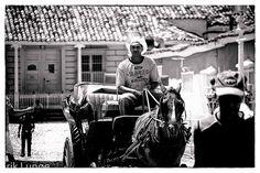 Cuba - Trinidad - Man in horse cart