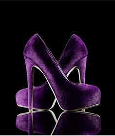 The Exclusive BG 111th Anniversary Collection - PURPLE POWER...