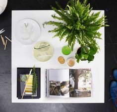 From above it's easy to see all the style elements of this coffee table: plants, plates, books, a candle, and a still-life decoration.