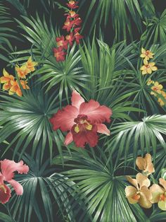 Bring some lush tropical detail into your home design with this pretty flower and foliage design. This wallpaper could be used to create a striking feature wall or to decorate an entire room. This high quality wallpaper benefits from being a paste the wall paper, which means it is incredibly easy to apply and work with whilst decorating. It will also stand the test of time and is easy to remove at a later date. World Wallpaper, Wallpaper Roll, Amazing Wallpaper, Green Wallpaper, Pastel Wallpaper, Exotic Plants, Tropical Plants, Motif Tropical, Branches