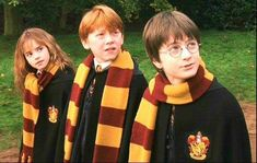Quiz about Harry Potter and the Sorcerer's Stone. Quiz to determine how well you remember first Harry Potter movie.