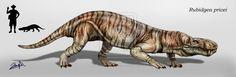 Tigrisaurus (rubidgea) pricei by karkemish00.deviantart.com on @DeviantArt