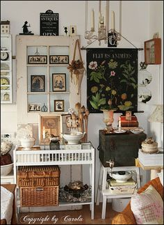 Living room corner with black botanical chart Fall 2011