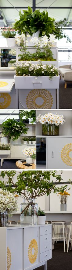 Ideas For Plants Photography Creative Spring Indoor Plants Low Light, Outdoor Plants, Marcel, Planting For Kids, Spring Racing Carnival, Plant Aesthetic, Plant Painting, Flower Landscape, Plant Illustration