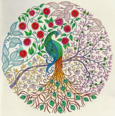 colored images from the secret garden coloring book - Google Search