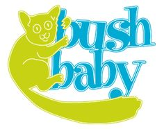 37 Best Bush Babies (Galagos) images | Primates, South ...