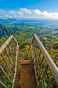 Haiku Stairs, Hawaii,Oahu. Did it. It was awesome. Would do it again in a heart beat