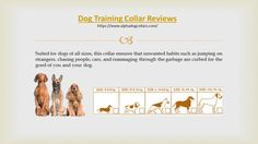 Over 85% of the customers that ended up buying dog collar from alpha dog collars have left a highly positive dog training collar review and highly recommend this to other dog owners as well. Offering features such as a 900 feet range, water resistance and a number of different levels for all modes, these dog collars would make your life so much easier.