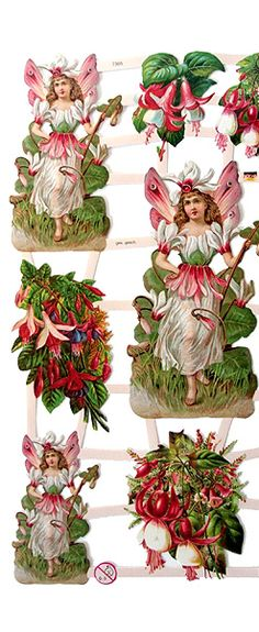 Fuchsia flower fairies from Germany for crafting