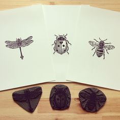 """1,458 Likes, 31 Comments - Mark Wilkinson (@inkshedpress) on Instagram: """"A productive afternoon spent reprinting some old insect cuts. #linocut #linoprint #linoblock…"""""""