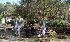 Mercer Arboretum & Botanic Gardens in Humble, TX
