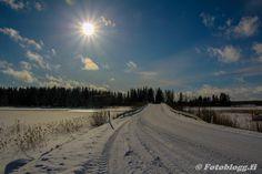 Niklas Falks Bilder, Sundom,Vasa m. Snow, Outdoor, Outdoors, Outdoor Games, Outdoor Living, Bud, Let It Snow