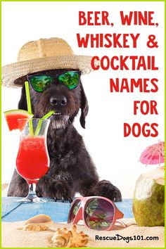 We have you covered with both female and male beer, wine, liquor, and craft beer names… I'm certain you will find the perfect fitting alcohol name for your new puppy. Good Puppy Names, Girl Dog Names, Cat Names, Puppies Names Female, Female Dog Names, Beer Names, Rescue Puppies, Dogs 101, Best Dog Breeds