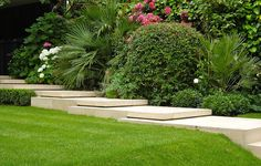 Classical garden Crouch End Archives » Hampstead Garden DesignHampstead Garden Design