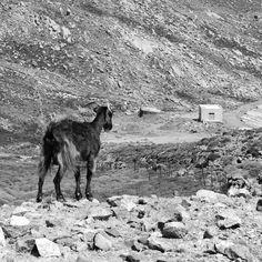 Photo A Day, First Photo, Archipelago, Greek Islands, Greece, Moose Art, Real Estate, Memories, Holidays
