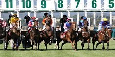 Learn how horse racing #betting works along with a list of top #racebooks http://ow.ly/5Ud930kWyqW