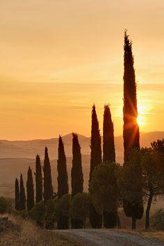 San Quirico d'Ocia - Tuscany, Italy