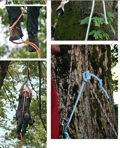 What #climbing system works best for you? Find out in the #SamsonRope online catalog! #Arborist