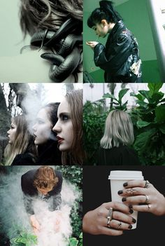 game-of-walkers:  hp aesthetics: slytherin   cunning; ambition; cleverness; power; fraternity; determination