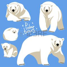 grizzly bear: Polar Bears collection. Clip art isolated on blue Illustration