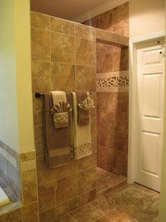 Remodel Bathroom Walk In Shower traditional bathroom walk-in showers design ideas, pictures