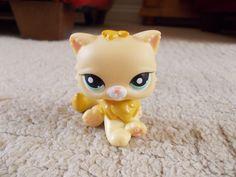 This is my Littlest Pet Shop cat/lion.
