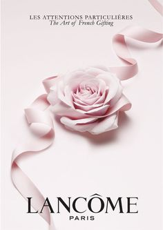 Lancome Paris, Perfume Ad, Cosmetics & Perfume, Free Online Makeup Courses, Visual Advertising, Islamic Art Calligraphy, Rose Design, Ad Design, Phone Wallpapers