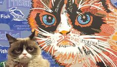 Grumpy Cat SXSW March 2015  Grumpy Cat at SXSW Friskies' Haus of Bacon with Grumpy Cat raises thousands for shelter cats. By Erika Sorocco | Posted: March 18, 2015, 2 p.m. EST #GrumpyCat